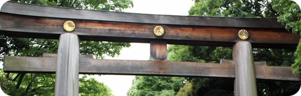 chrysanthème meiji-jingu famille impériale